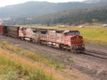 BNSF 876